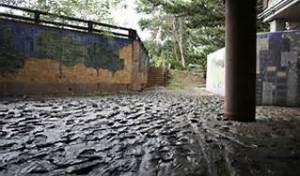 boulder floods